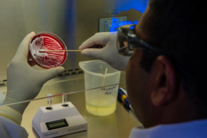 Que tipos de test existen para detectar el coronavirus y cuales son sus diferencias